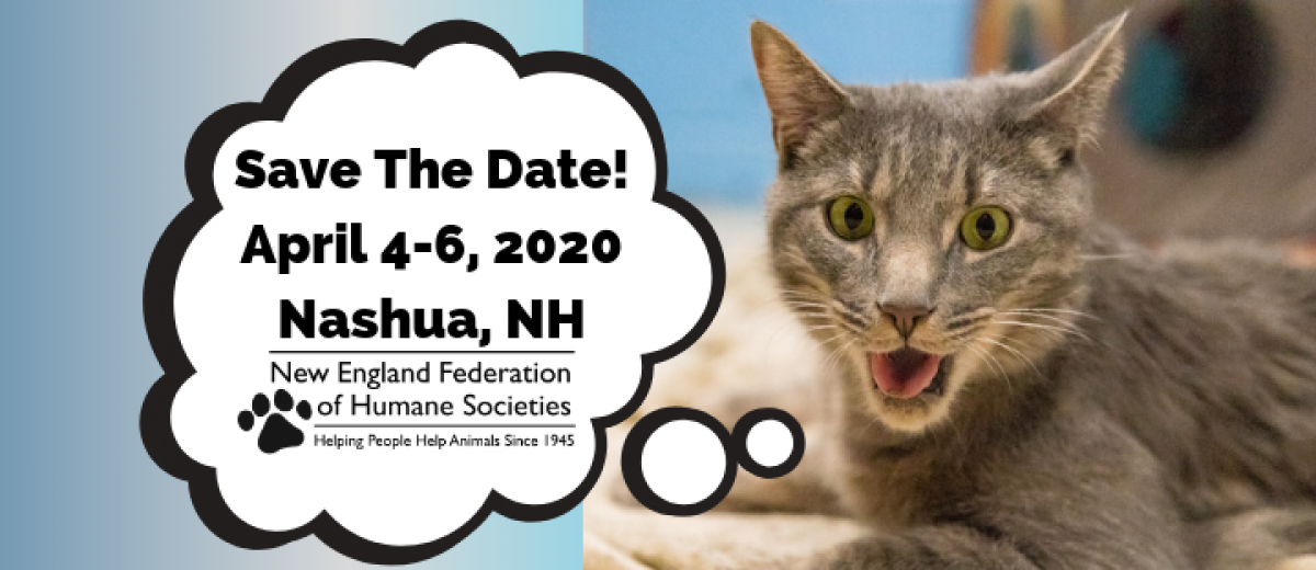 Save the Date for 75th Annual Conference